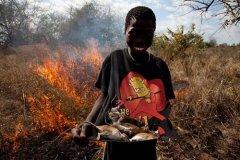 非洲人都爱吃老鼠 真难以接受